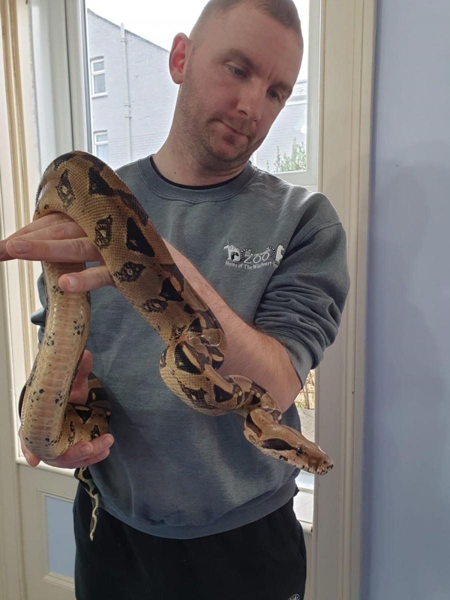 Gary holding Boa Constrictor