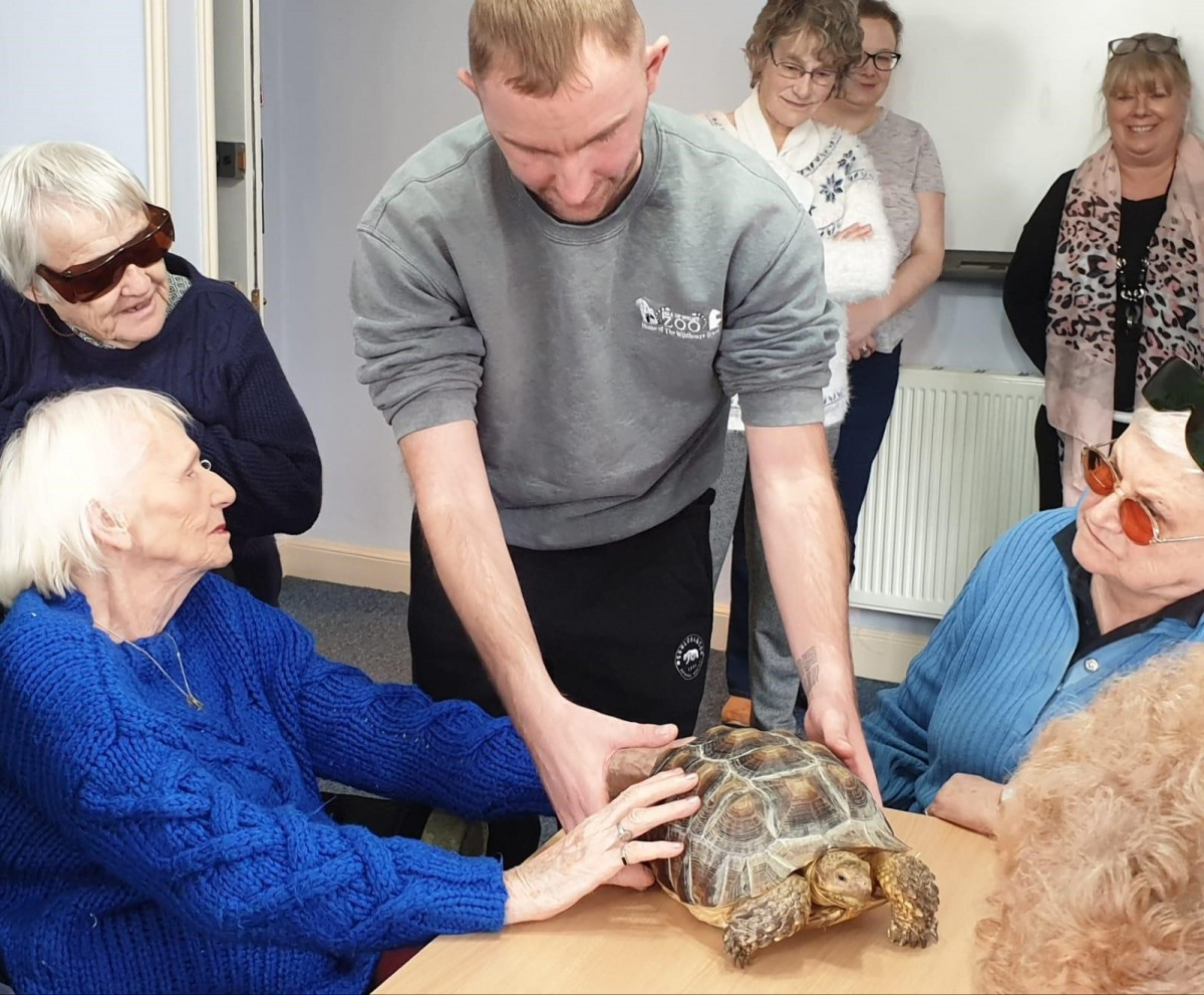 Gary showing off the Sulcuta Tortoise