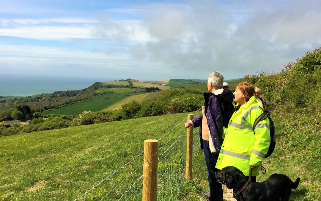 Striders in South Wight